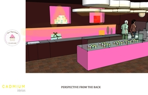 Small_6_cadmium_interiors_perspective_from_back