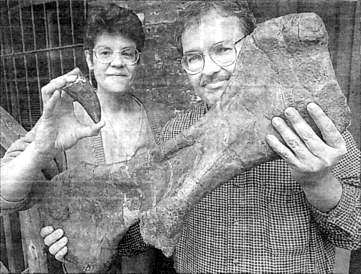 David and Sandra Douglass Prehistoric Life Museum -