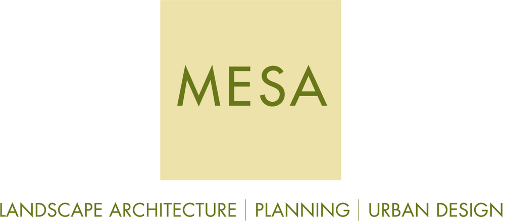 MESA Design Group